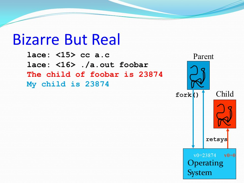 Bizarre But Real lace: <15> cc a.c Parent