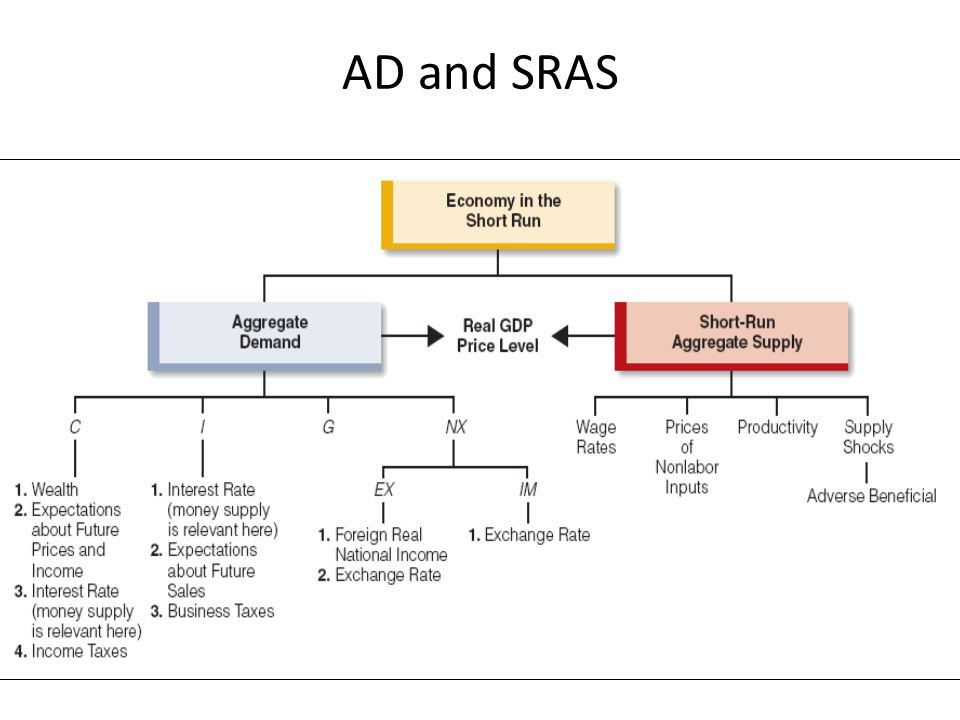 AD and SRAS