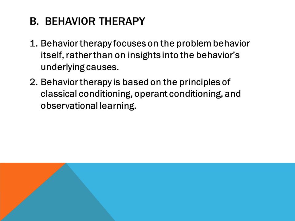 B. Behavior Therapy Behavior therapy focuses on the problem behavior itself, rather than on insights into the behavior's underlying causes.