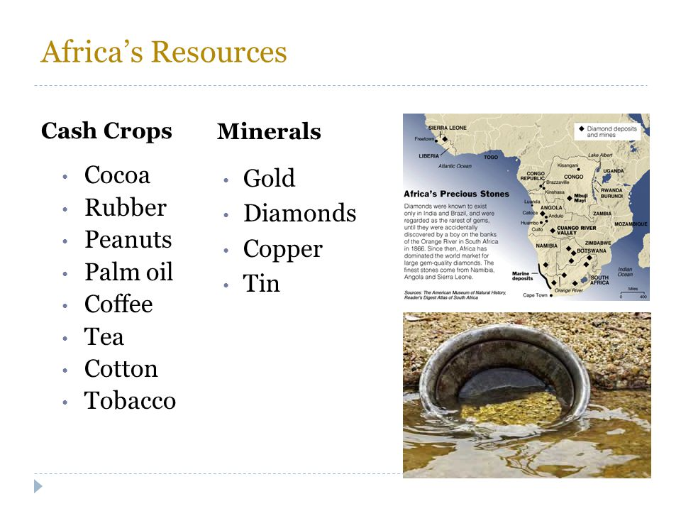 Africa's Resources Cocoa Rubber Peanuts Palm oil Coffee Tea Cotton