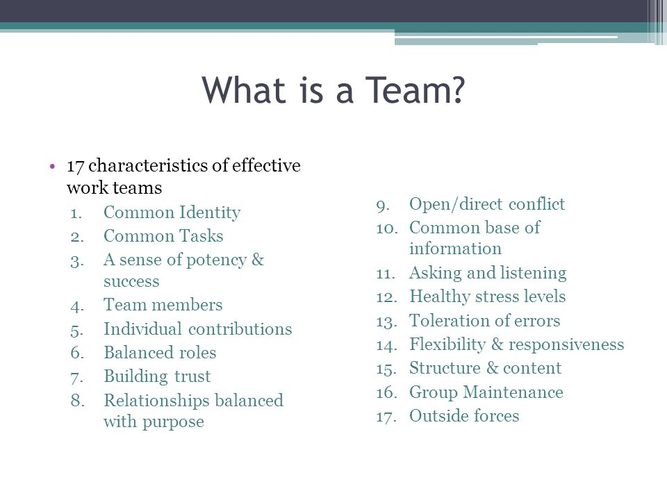 What is a Team 17 characteristics of effective work teams