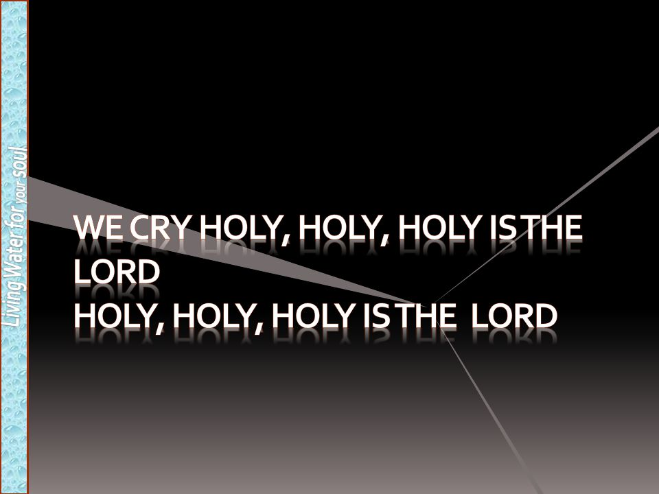 We cry holy, holy, holy is the Lord Holy, holy, holy is the Lord