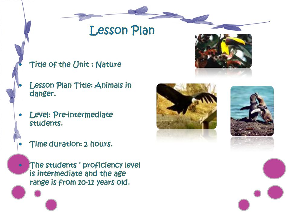 Lesson Plan Title of the Unit : Nature