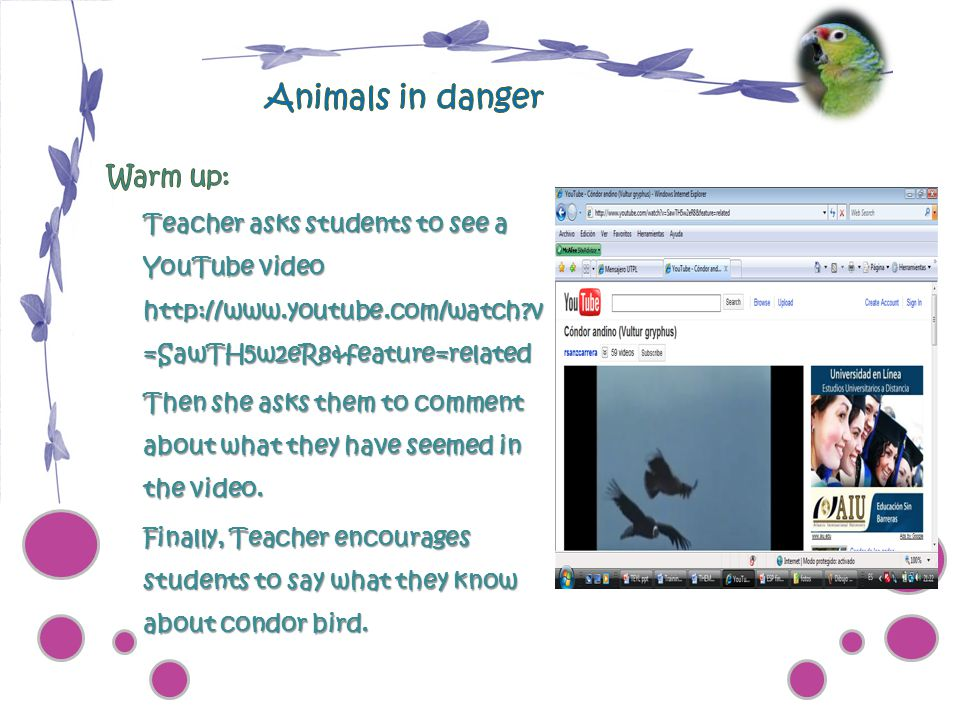 Animals in danger Warm up:
