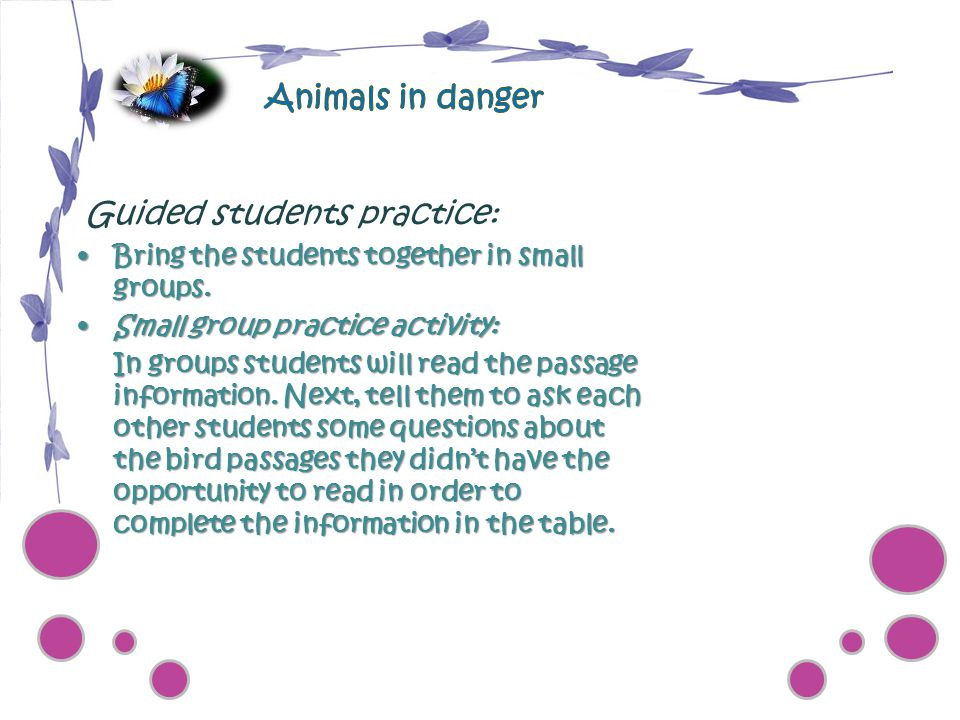 Animals in danger Guided students practice: