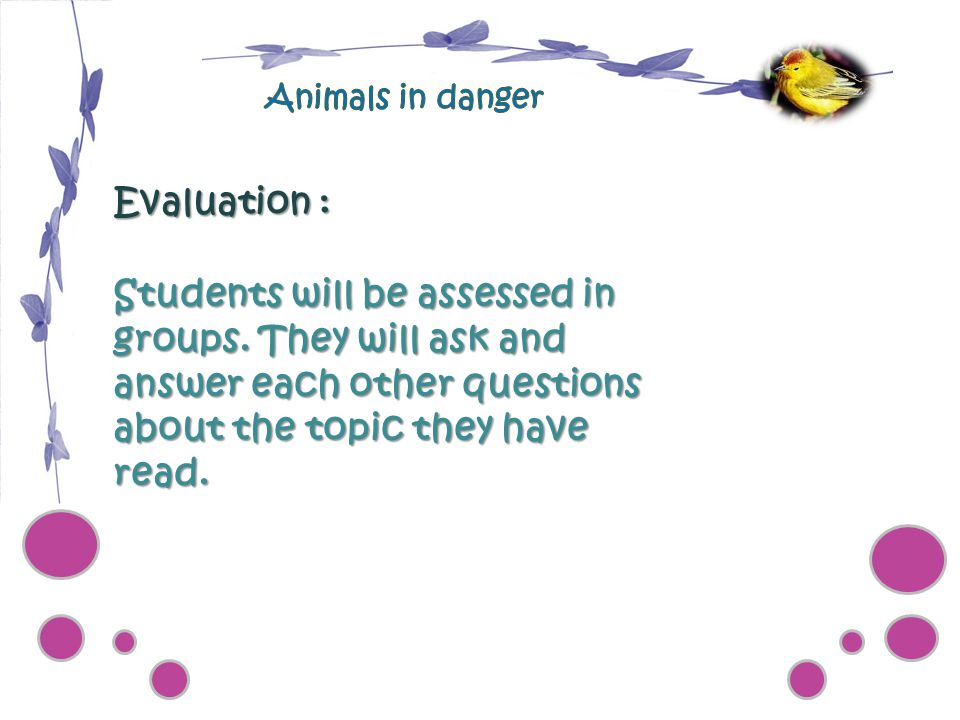 Animals in danger Evaluation :