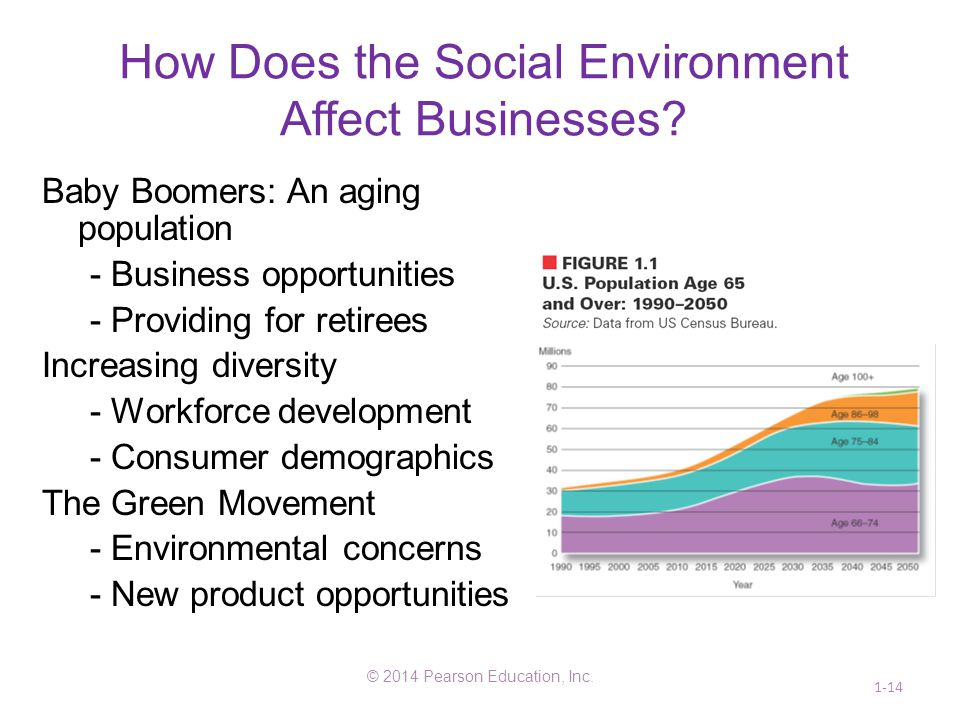 How Does the Social Environment Affect Businesses