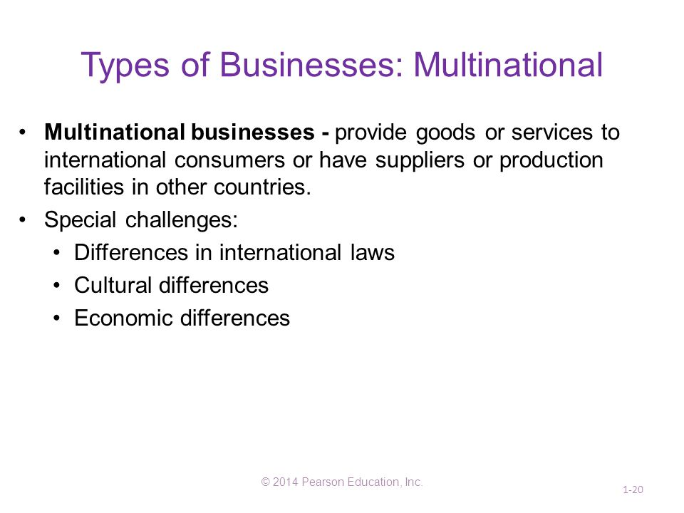 Types of Businesses: Multinational