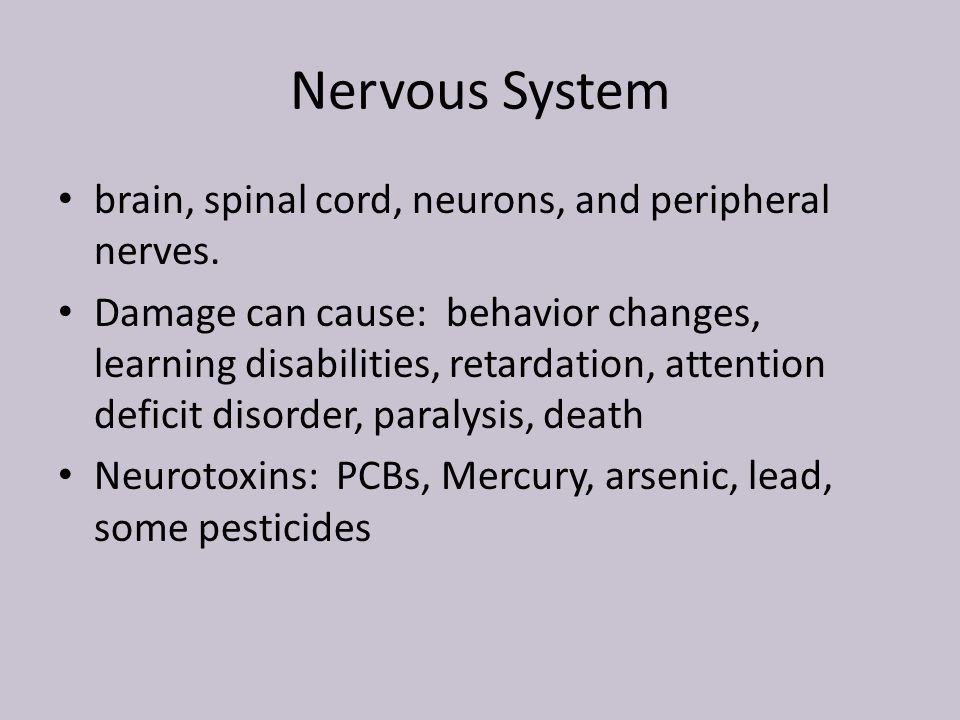 Nervous System brain, spinal cord, neurons, and peripheral nerves.