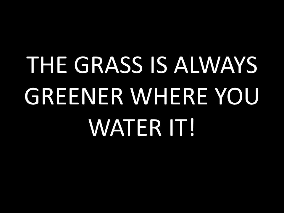 THE GRASS IS ALWAYS GREENER WHERE YOU WATER IT!