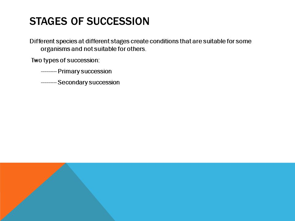 Stages of Succession