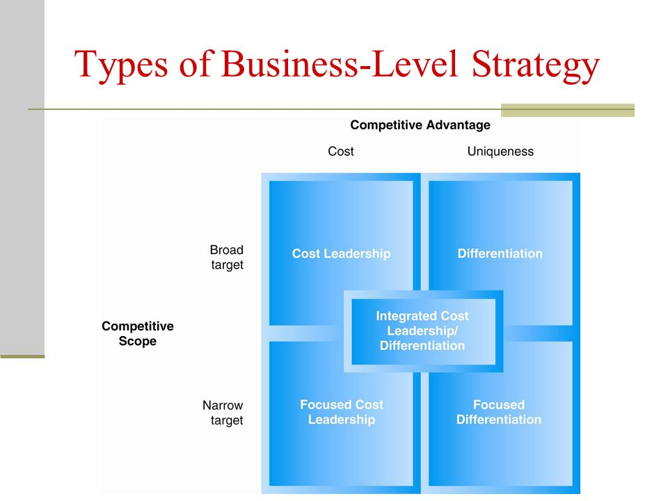 Types of Business-Level Strategy