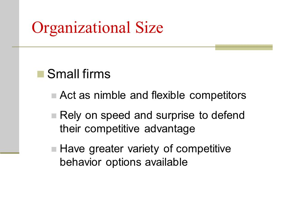 Organizational Size Small firms Act as nimble and flexible competitors