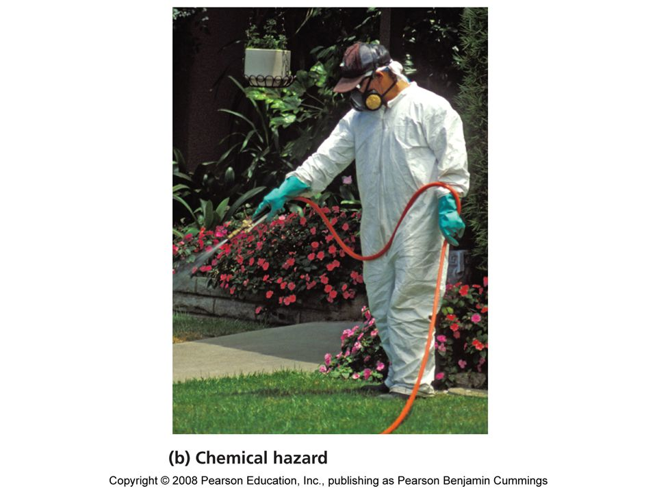 Environmental health hazards can be divided into four types.