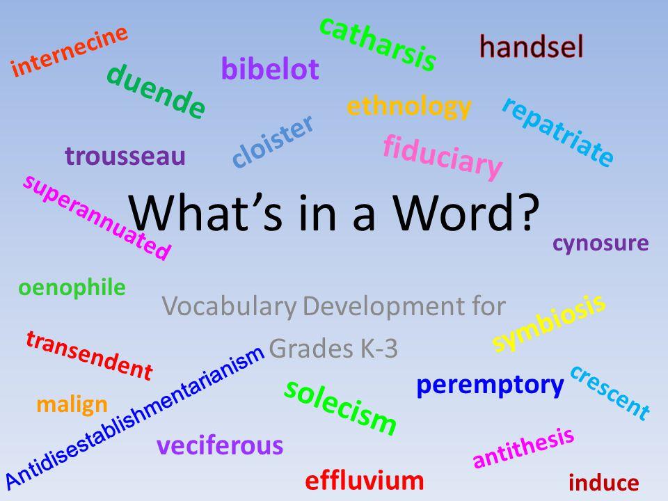Vocabulary Development for Grades K-3