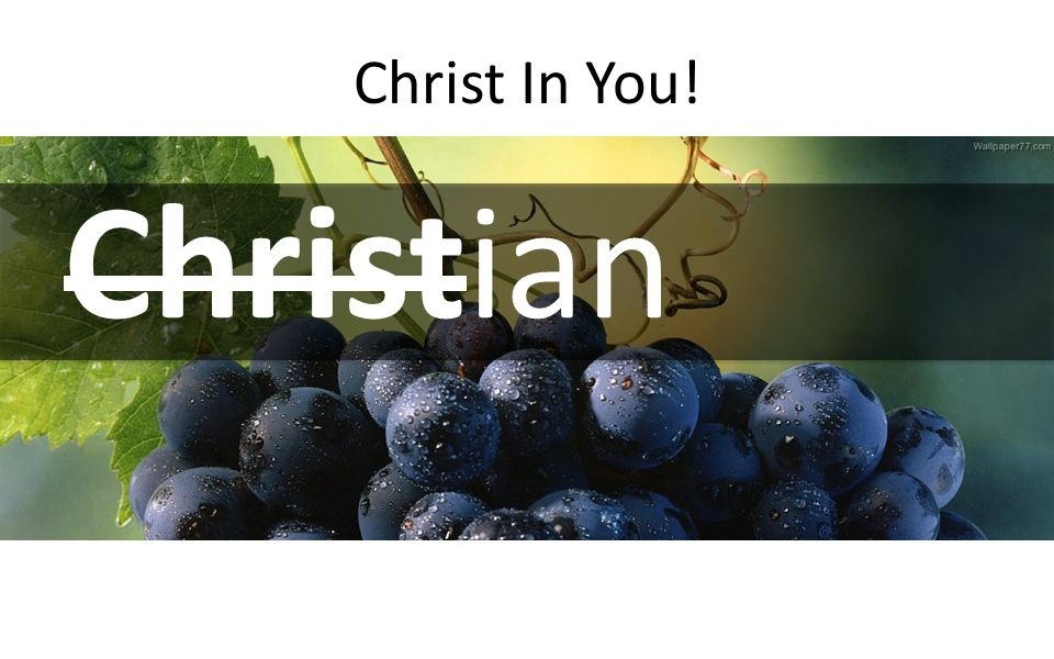Christ In You! Christian
