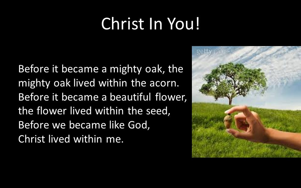 Christ In You! Before it became a mighty oak, the mighty oak lived within the acorn.
