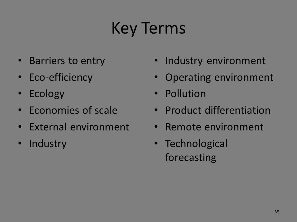 Key Terms Barriers to entry Eco-efficiency Ecology Economies of scale