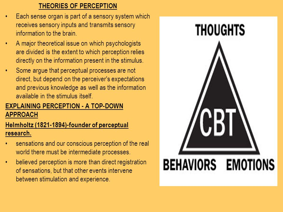 THEORIES OF PERCEPTION