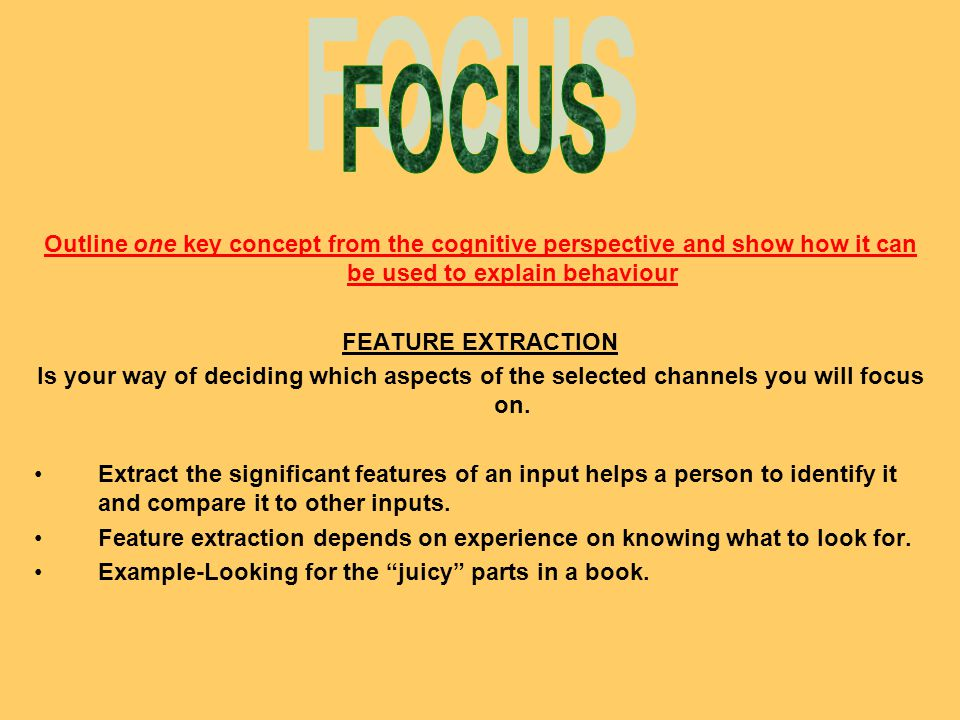 FOCUS Outline one key concept from the cognitive perspective and show how it can be used to explain behaviour.