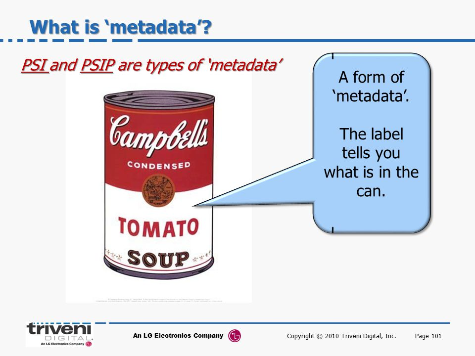 What is 'metadata' PSI and PSIP are types of 'metadata'