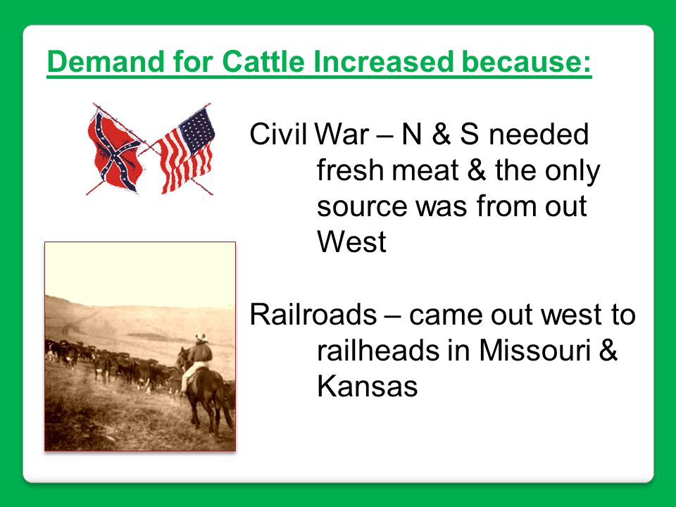 Demand for Cattle Increased because:
