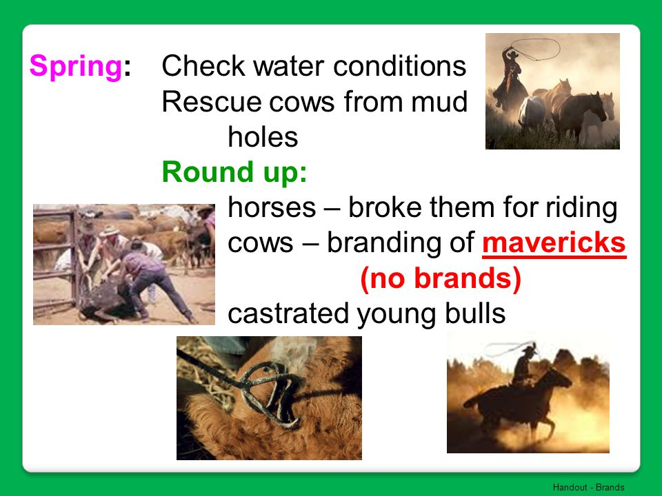 Spring: Check water conditions Rescue cows from mud holes Round up: