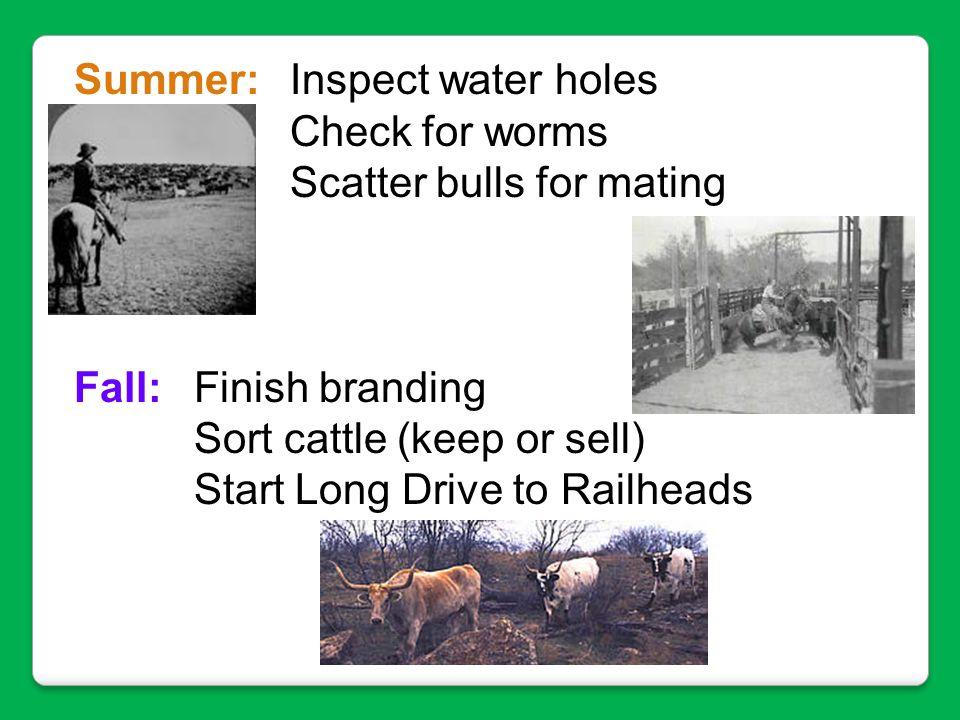 Summer: Inspect water holes