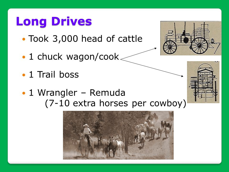 Long Drives Took 3,000 head of cattle 1 chuck wagon/cook 1 Trail boss
