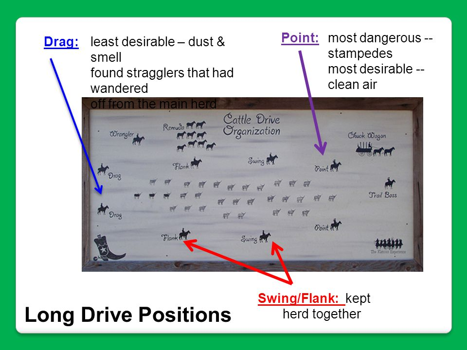 Long Drive Positions Point: most dangerous -- stampedes