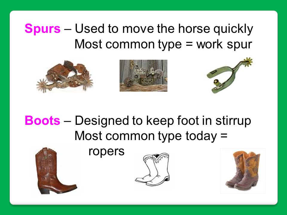 Spurs – Used to move the horse quickly