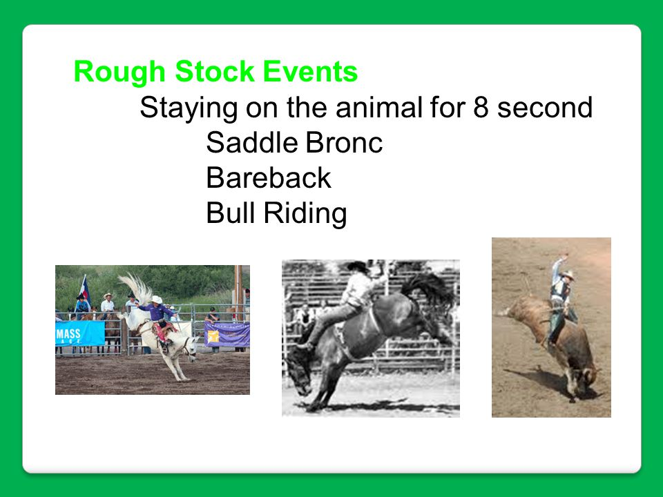 Rough Stock Events Staying on the animal for 8 second Saddle Bronc Bareback Bull Riding