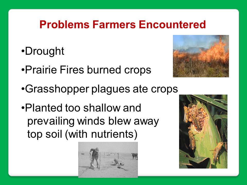 Problems Farmers Encountered