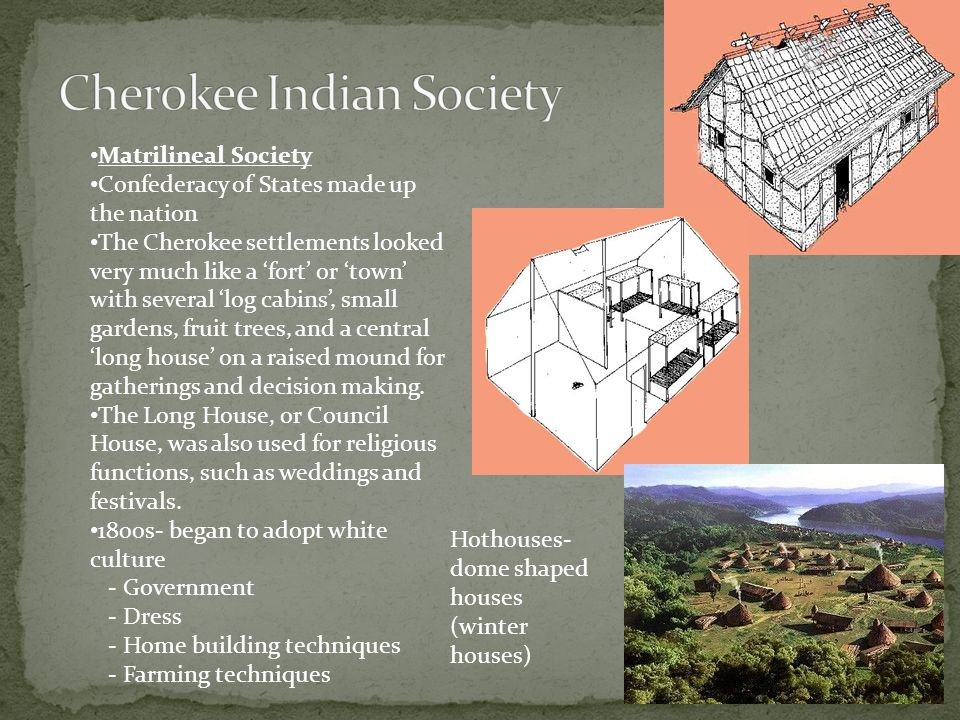 Cherokee Indian Society