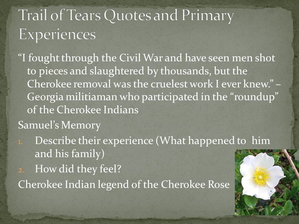 Trail of Tears Quotes and Primary Experiences
