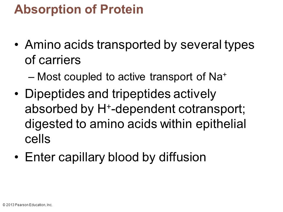 Amino acids transported by several types of carriers