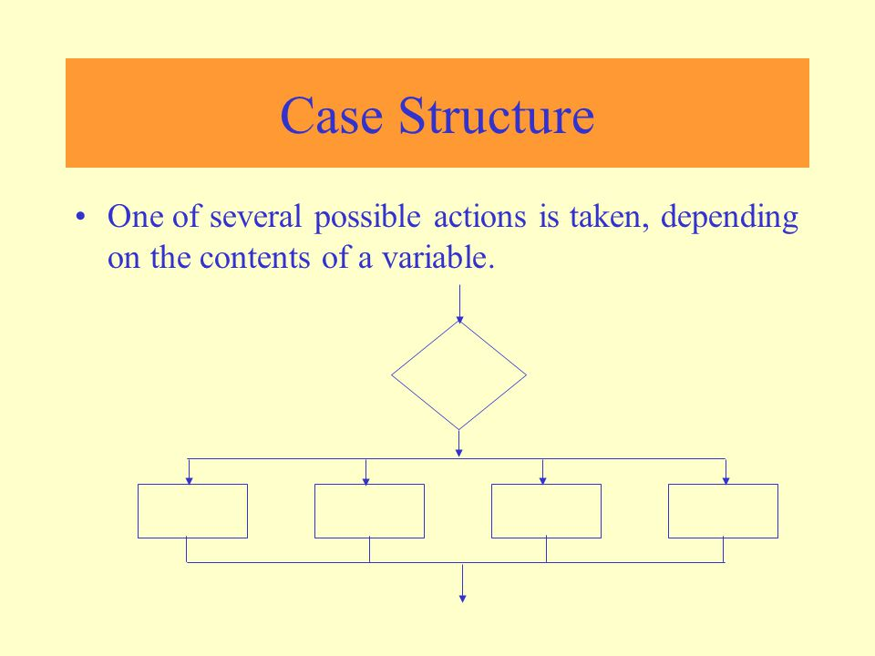 Case Structure One of several possible actions is taken, depending on the contents of a variable.