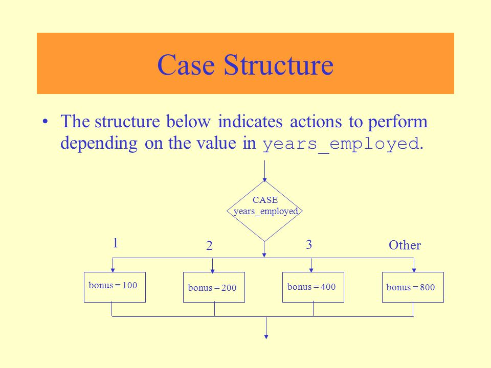Case Structure The structure below indicates actions to perform depending on the value in years_employed.