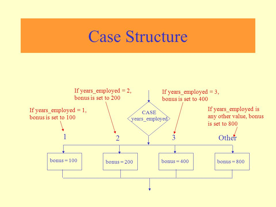 Case Structure 1 2 3 Other If years_employed = 2, bonus is set to 200