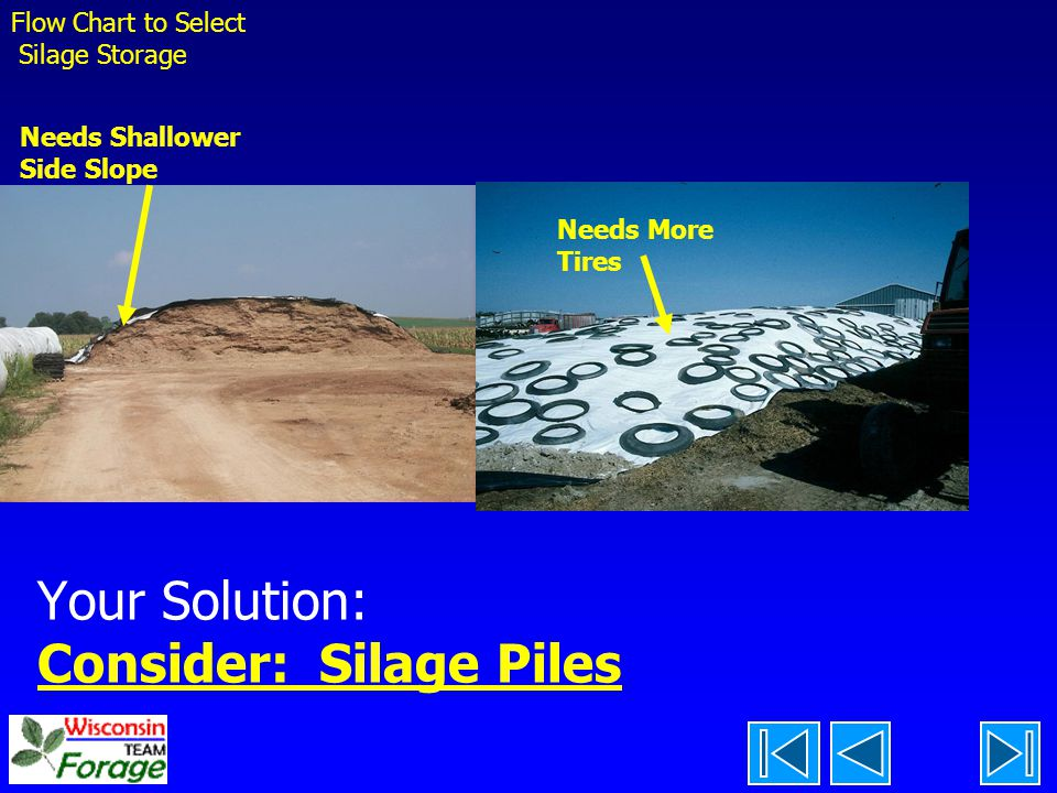 Your Solution: Consider: Silage Piles
