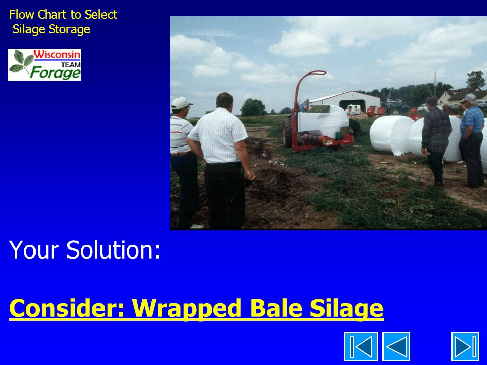 Your Solution: Consider: Wrapped Bale Silage