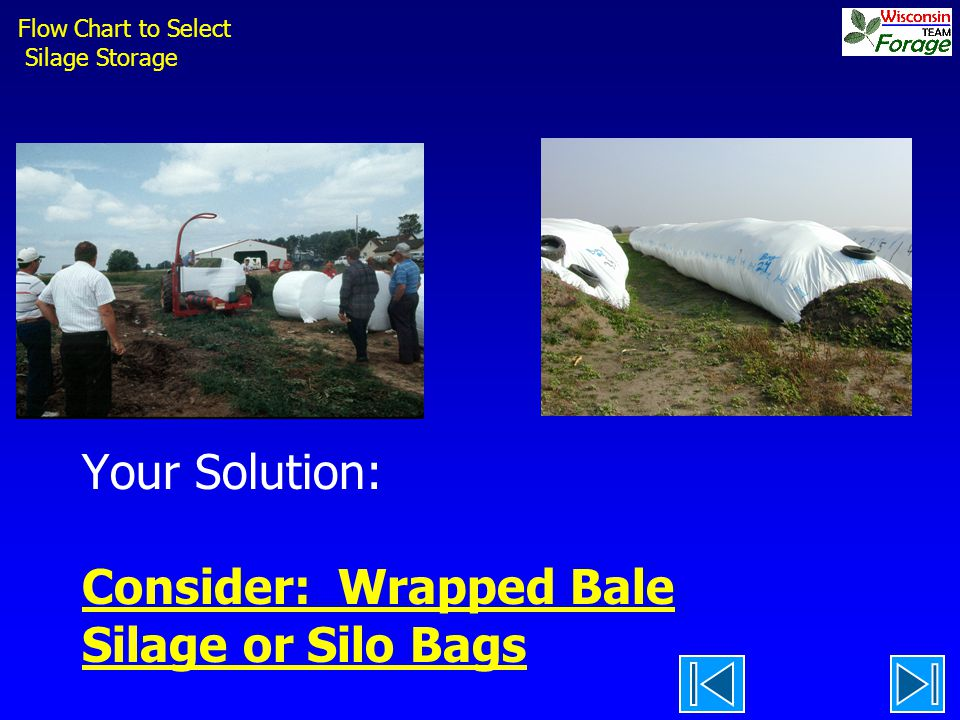 Your Solution: Consider: Wrapped Bale Silage or Silo Bags