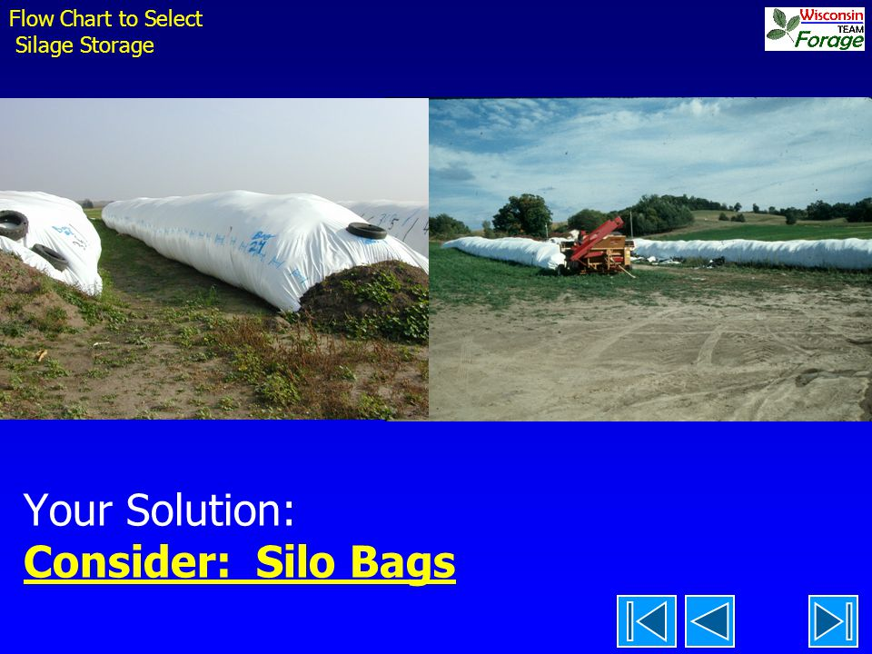 Your Solution: Consider: Silo Bags