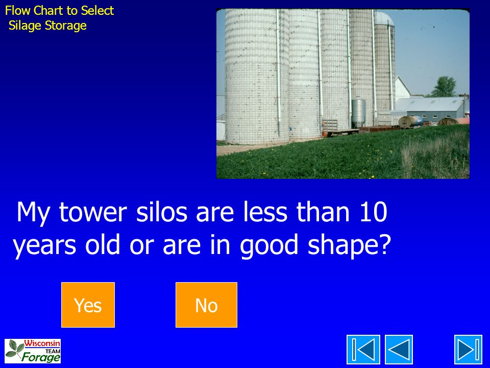 My tower silos are less than 10 years old or are in good shape