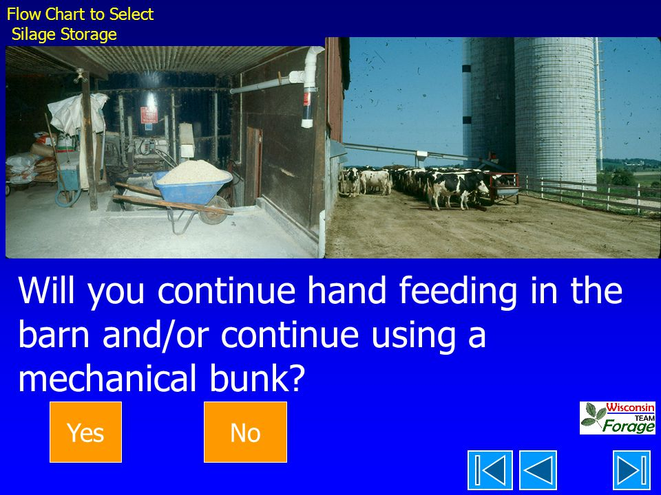 Flow Chart to Select Silage Storage. Will you continue hand feeding in the barn and/or continue using a mechanical bunk