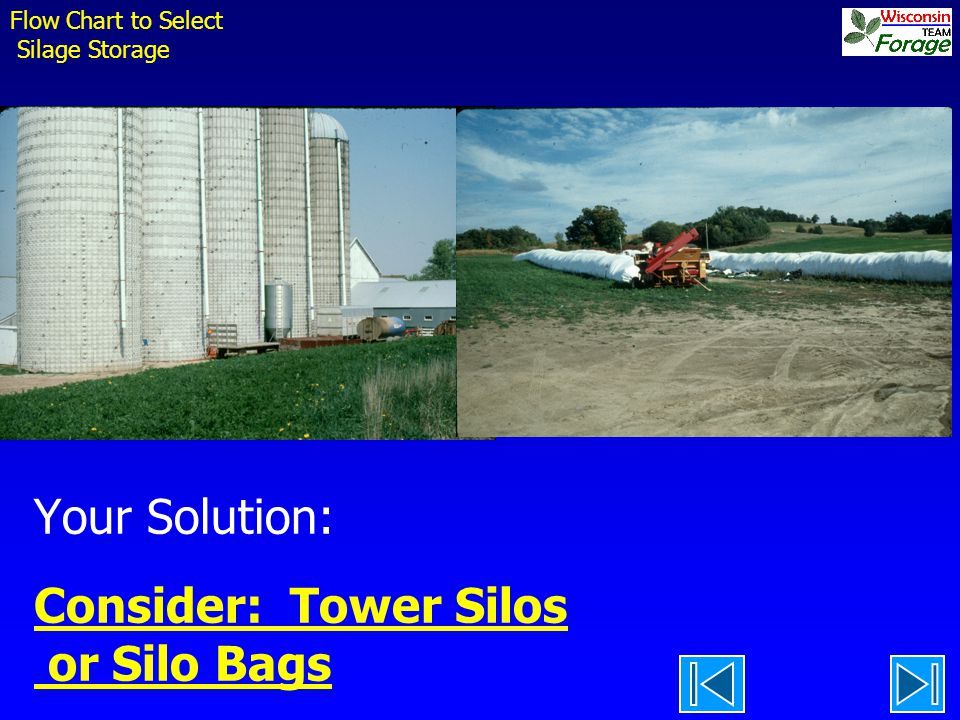 Your Solution: Consider: Tower Silos or Silo Bags