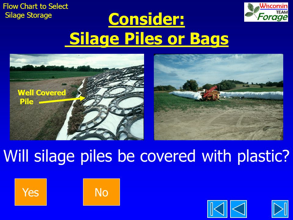 Flow Chart to Select Silage Storage. Consider: Silage Piles or Bags Will silage piles be covered with plastic