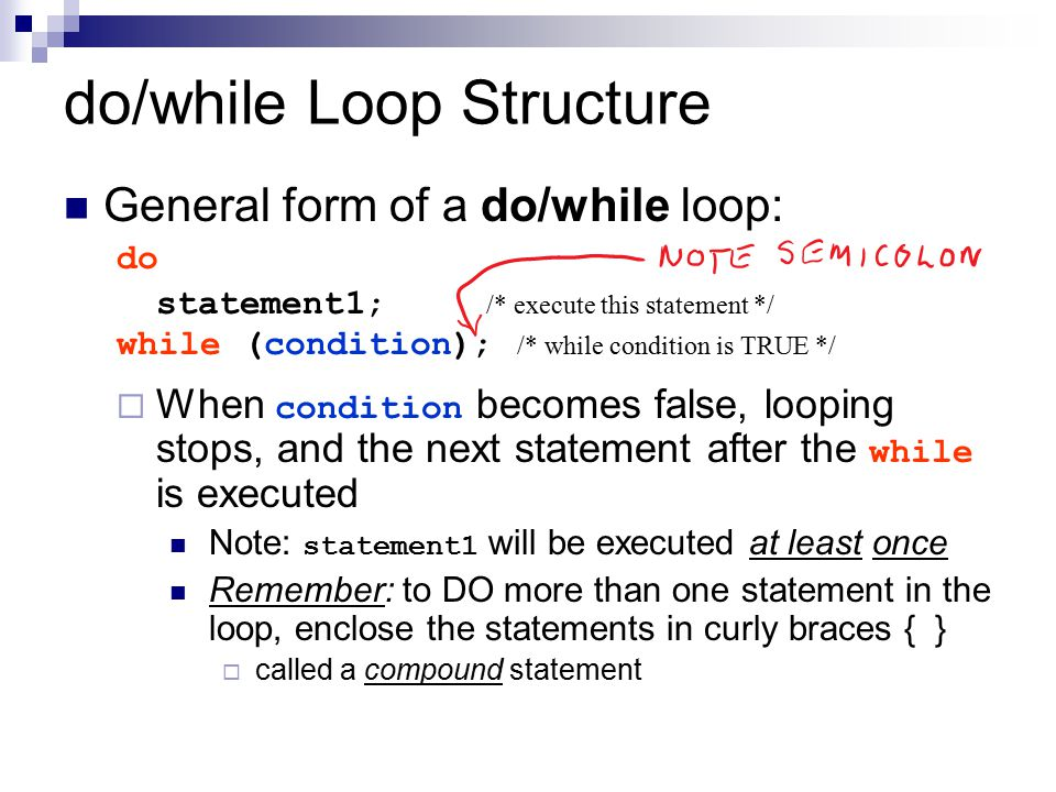 do/while Loop Structure