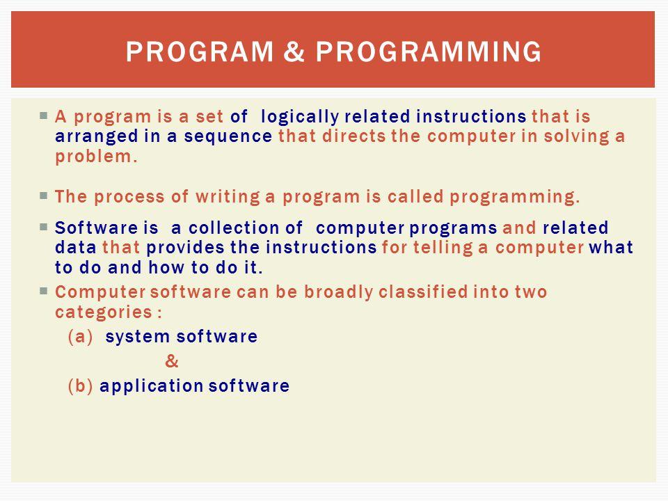 PROGRAM & PROGRAMMING