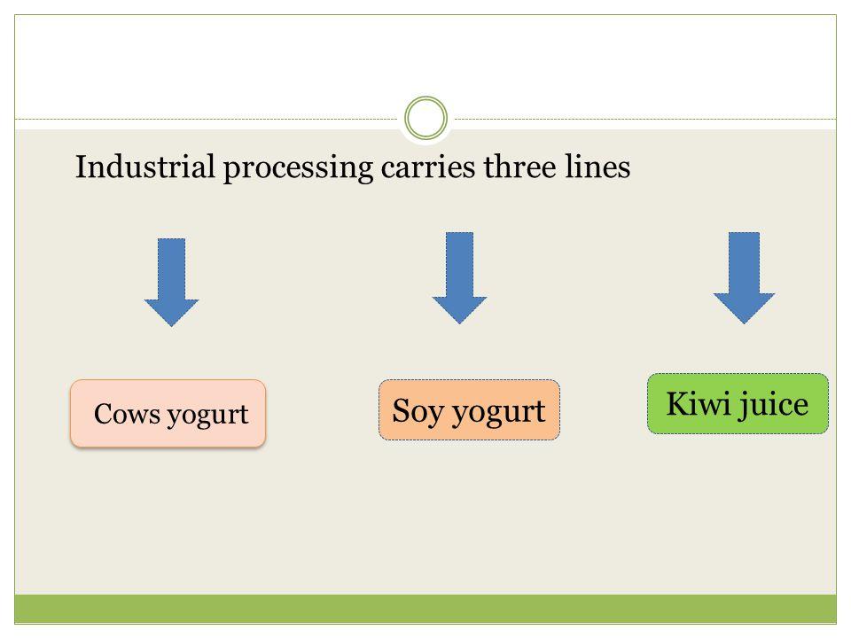 Kiwi juice Soy yogurt Industrial processing carries three lines